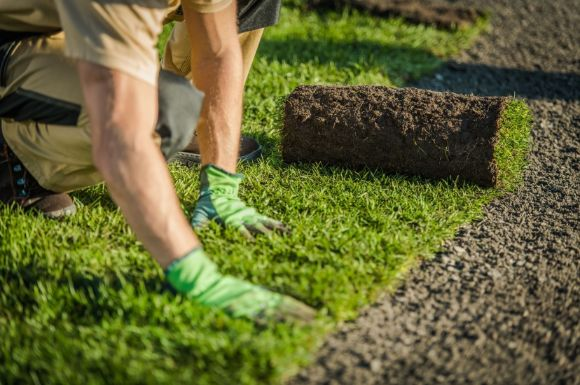 grass turfing baing installed by a landscape architect from Werribee Landscaping